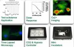 Imaging & Recording in Animal Physiology & Cell Biology